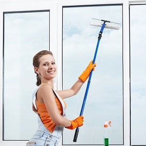 Hire Professional Cleaners sm